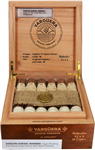 YARGUERA Robusto 18ct