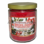 SMOKE ODOR Candle Hollyberry